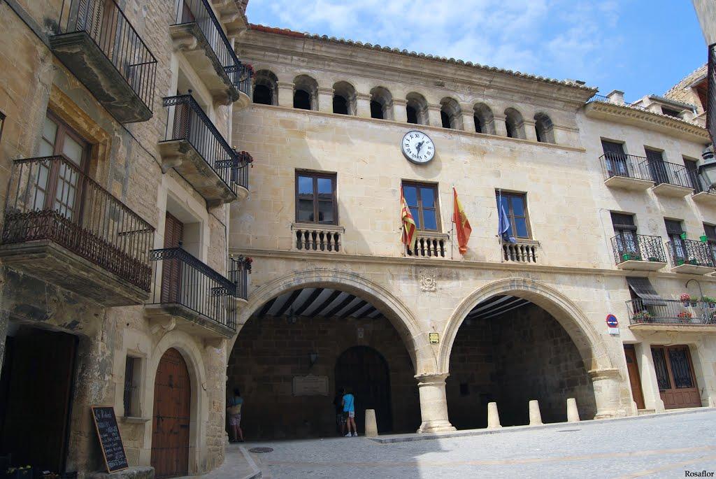 Videoproyección profesional en sala corporativa -  Ayuntamiento Calaceite